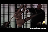 Tied Shibari Suspended And Spanked